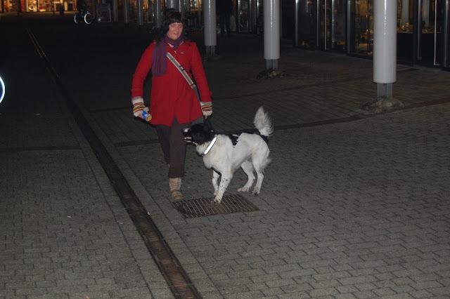 Jonge Hond centrum Emmen - 2012-04-01%2B050.JPG