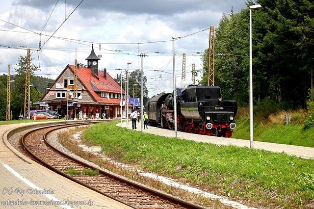 527596_Bärental