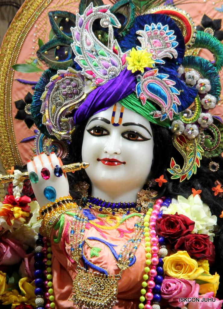 ISKCON Juhu Sringar Deity Drashan on 17th Jan 2017 (40)