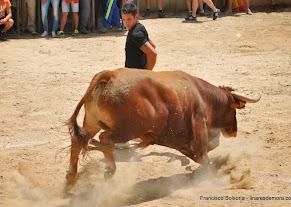 067-peña taurina linares 2014 197.JPG
