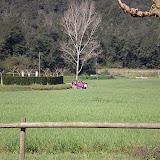 Campaments Amb Skues 2007 - ROSKU%2B085.jpg