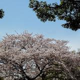 2014 Japan - Dag 7 - mike-P1050656-0192.JPG