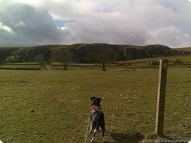 teesdale fellwalking reccy 015