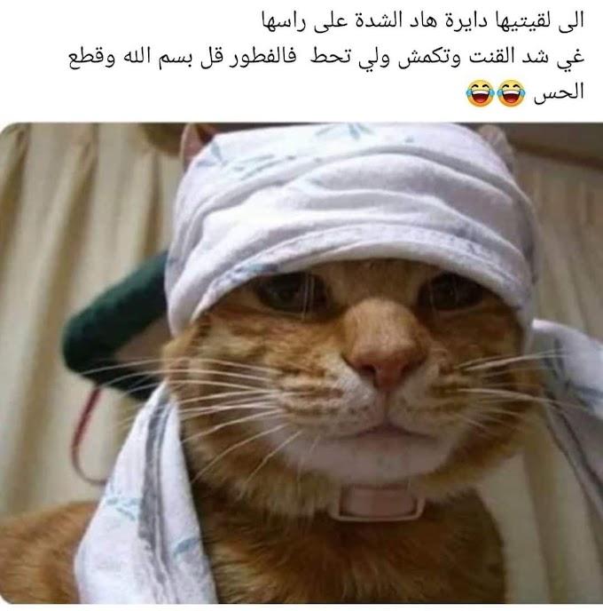 nokat ramadan2021