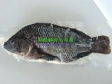鹹水吳郭魚600克(2...