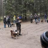 20140101 Neujahrsspaziergang im Waldnaabtal - DSC_9799.JPG