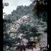 dia060-035-1965-tabor-bakony-ii.jpg