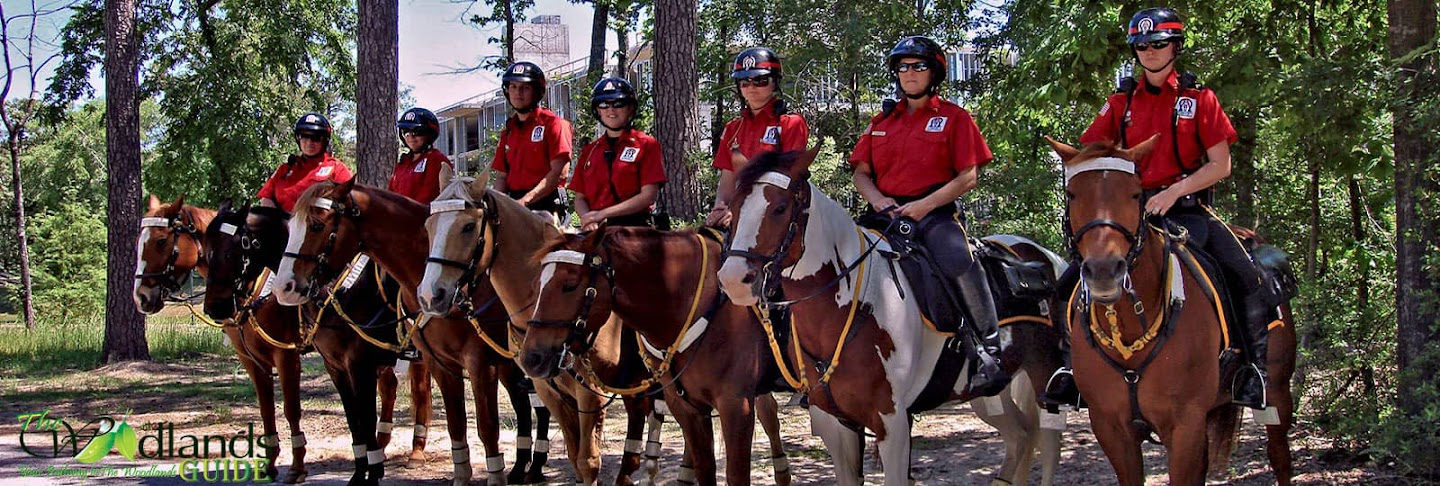 The horse mounted security patrol Town Center, The Woodlands Texas