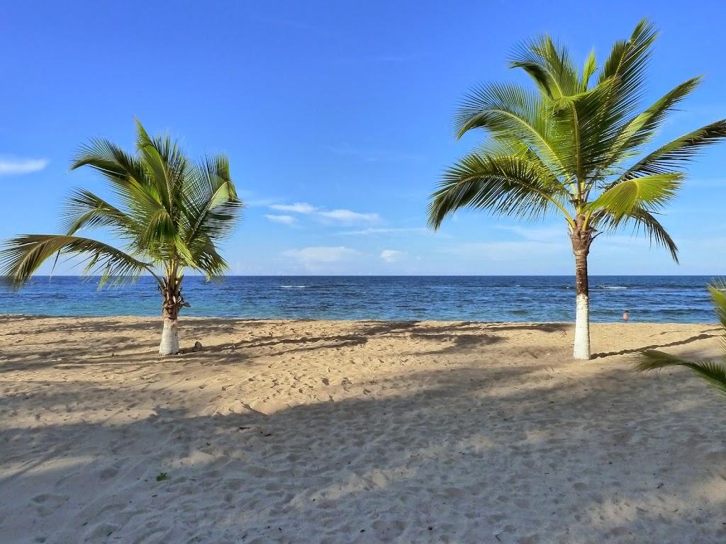 Sand Meer und Palmen