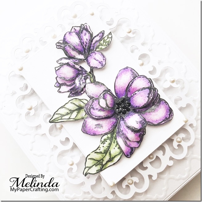 RG Magnolia Notes melinda 4 b