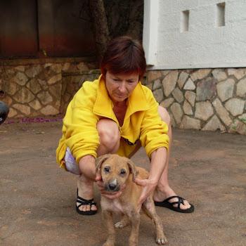 19-11-2009, uganda