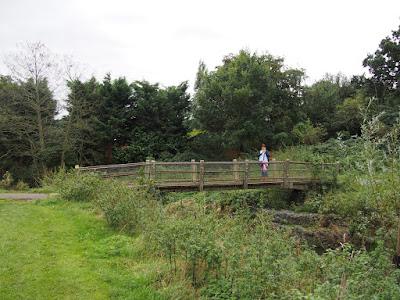 Bridge over River Chelmer