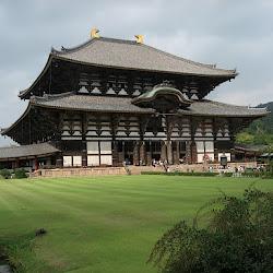 Japan in Autumn: Nara