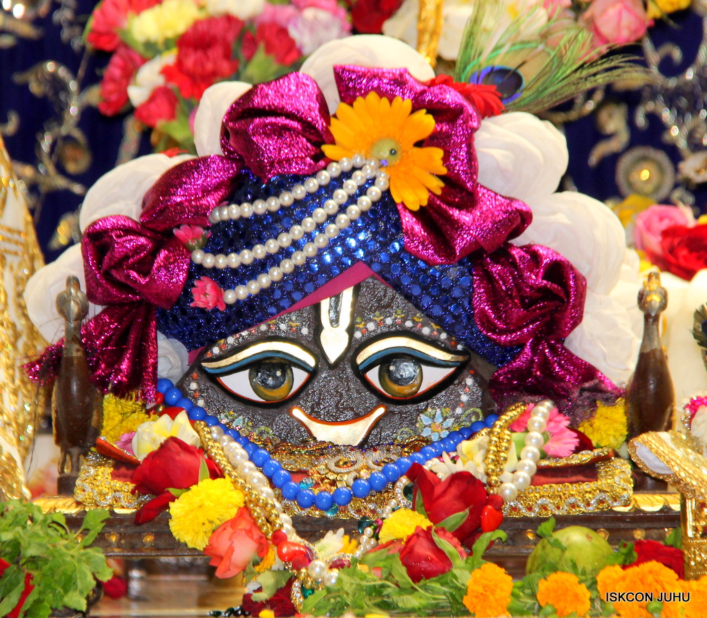 ISKCON Juhu Sringar Deity Darshan on 11th Sep 2016 (12)