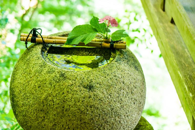 臥龍山荘 庭園 3