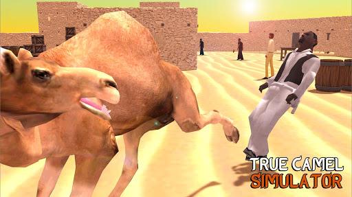 True Camel Simulator