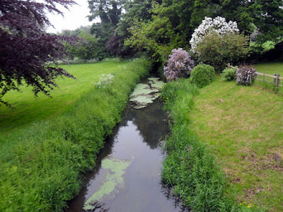 narrow stream flows through field
