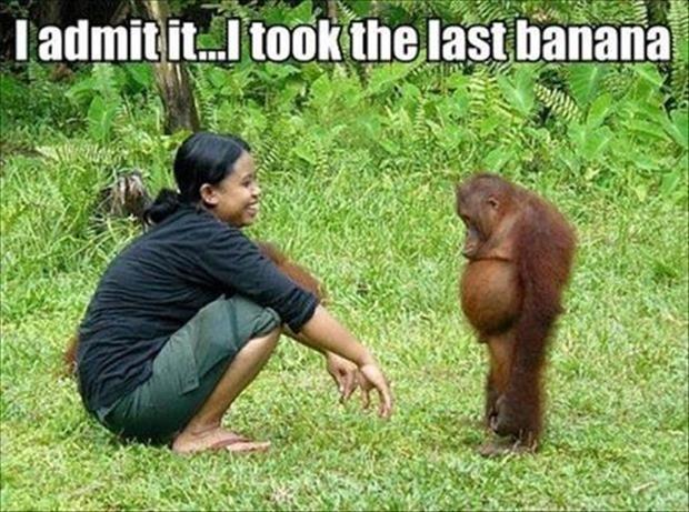 [tubby+orangatangue-took-the-last-banana1%5B3%5D]