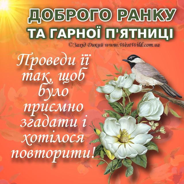 Доброго ранку та гарної п'ятниці
