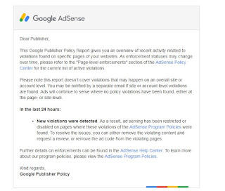 Got Email in Adsense Publisher Policy Violation Report - Google