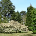 Domaine de Courson : parc