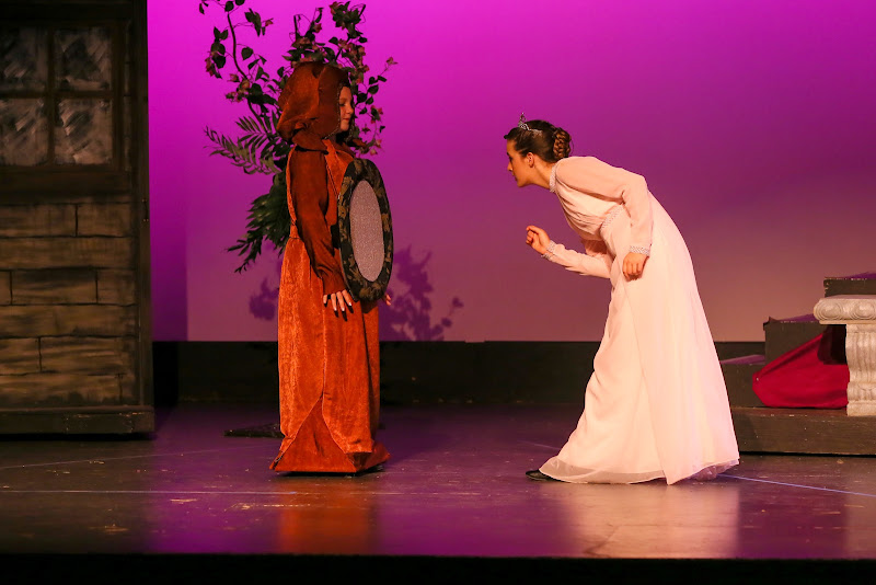 2014Snow White - 125-2014%2BShowstoppers%2BSnow%2BWhite-6606.jpg