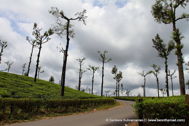 The heavenly Valparai landscape