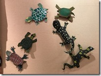 Vernal Pond Turtles by Heather Barros Students