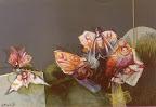 farfalle-1.jpg