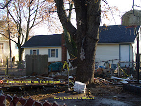 Dorothy's yard before we cleaned it - debris everywhere