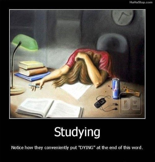 picture of a girl with her head on the desk...studying ends with the word  dying