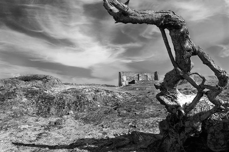 """""""Qual è quella ruina che nel fianco di qua da Trento L'Adice percosse"""" Inferno canto XII di rudi59"""