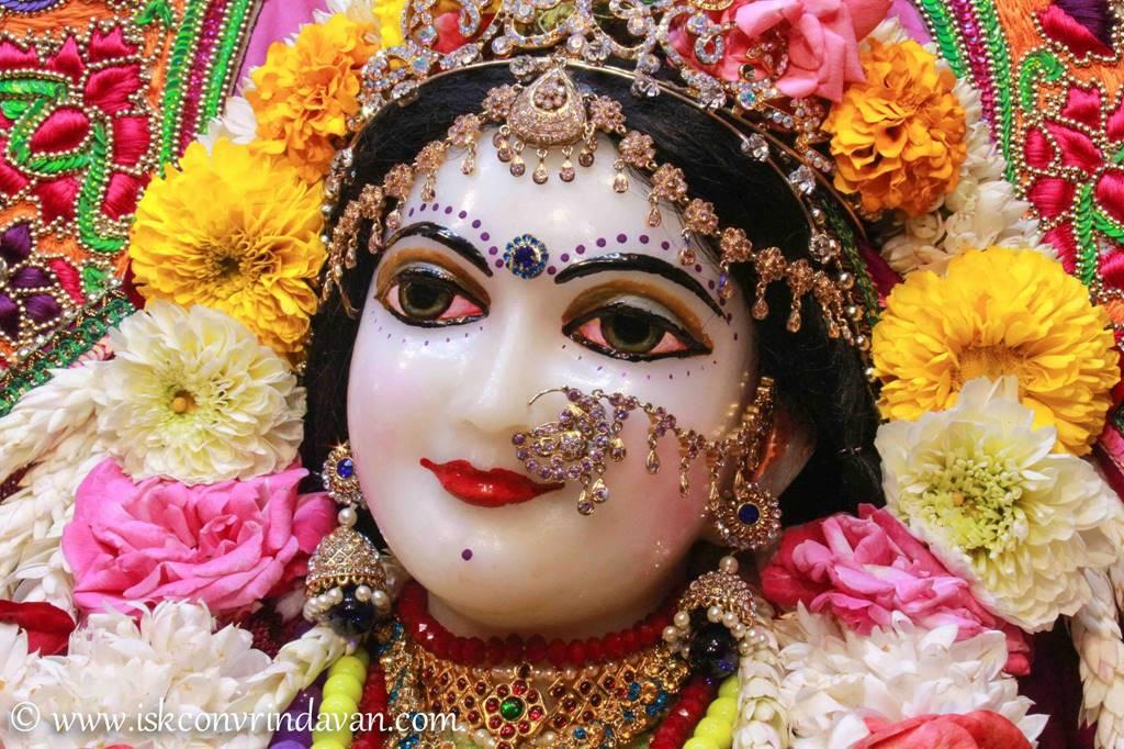 ISKCON Vrindavan Sringar Deity Darshan 14 Jan 2016 (21)