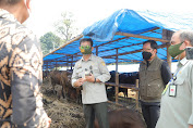 Mentan SYL Bersama Walikota Bogor Pantau Ketersediaan Hewan Kurban