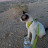 Beth Renquist avatar image