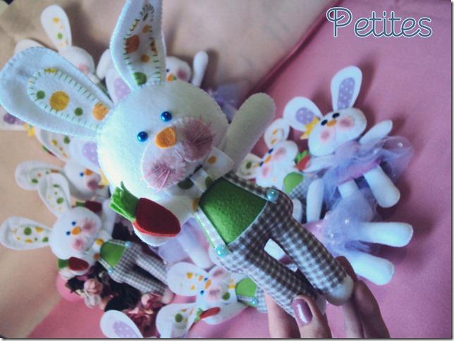 coelhos06