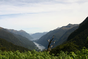 Doubtful Sound, viewed from atop the Wilmot Pass