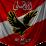 Hanan Ahmed's profile photo