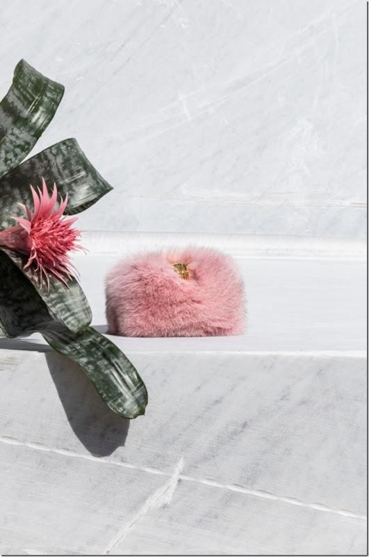 carmen volpe rosa