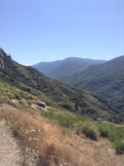Леса и горы Калифорнии