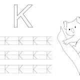 K_koala.JPG
