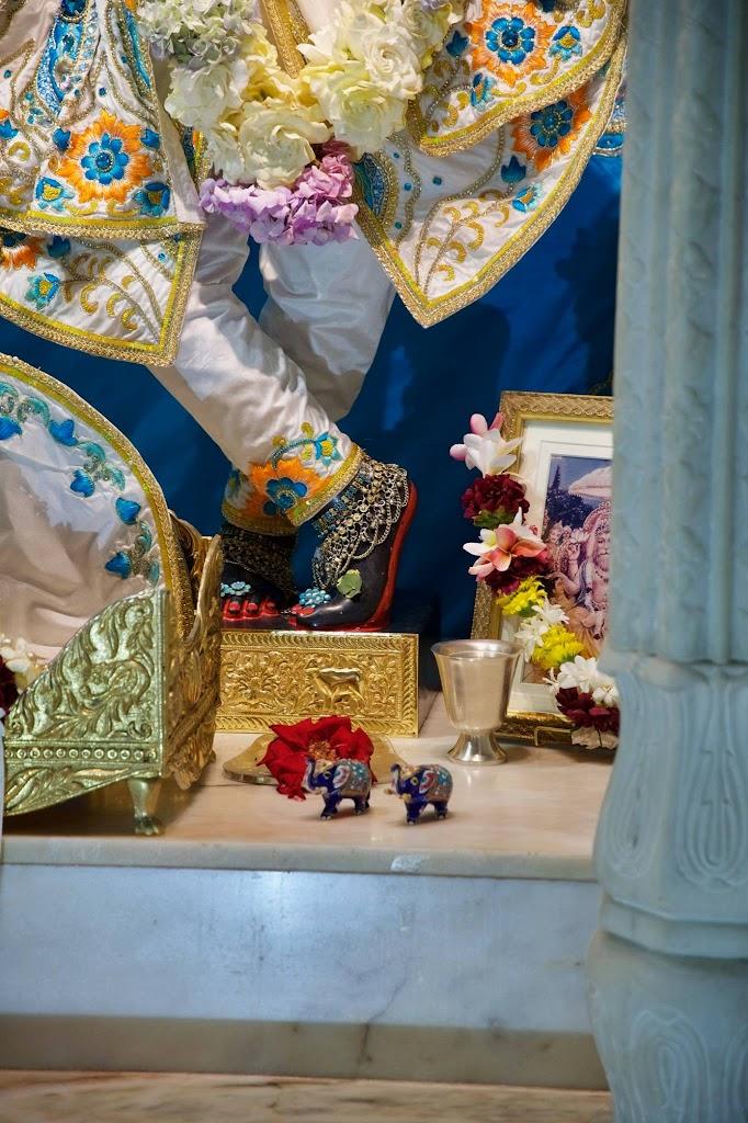 ISKCON New Govardhan Deity Darshan 08 Dec 2016 (43)