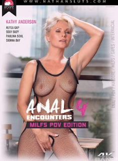 Anal Encounters 4 – MILF POV Edition