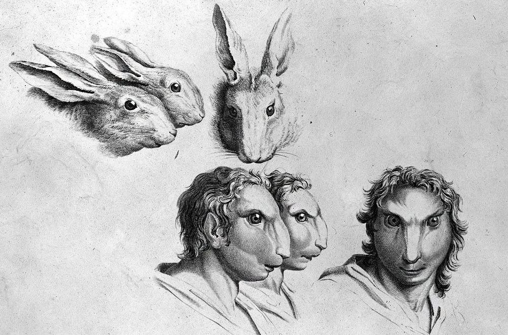 charles-le-brun-physiognomic-heads-9