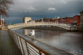 Photo: Ha'penny Bridge