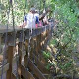 04-06-12 Myaka River State Park - IMGP4429.JPG
