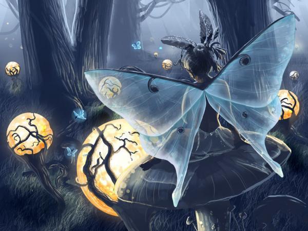Sweet Faery, Fairies Girls 2