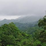 El Valle de Antón, 750 m (Coclé, Panamá), 31 octobre 2014. Photo : J.-M. Gayman