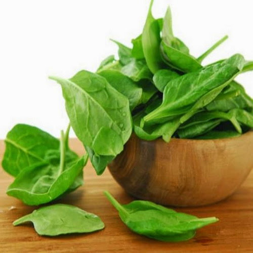 Польза шпината для организма