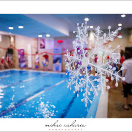 20161217-Little-Swimmers-IV-concurs-0061